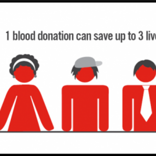 29176678_1974955975913026_8470137444329586688_o  Minimum Requirements to be a Blood Donor:  – You are between the ages of 16 and … 29176678 1974955975913026 8470137444329586688 o 320x320