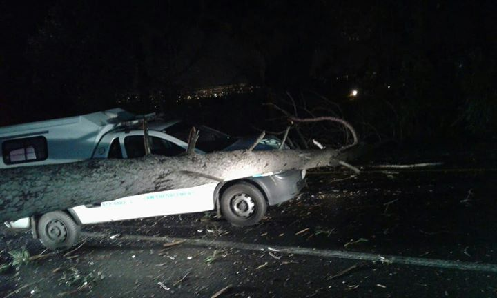 34123109_1679658082083010_1939724311682088960_o  A tree fell on a Law Enforcement officers vehicle on Constantia Main road this m… 34123109 1679658082083010 1939724311682088960 o