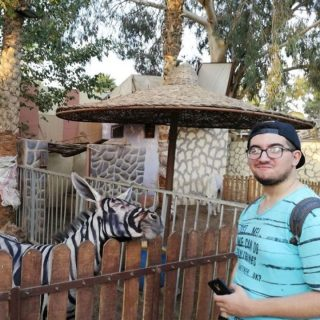 Zoo in Cairo Paints Donkeys Black and White to Pass Them Off As Zebras, Director… Zoo in Cairo Paints Donkeys Black and White to Pass Them Off As Zebras Director 320x320