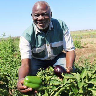 He turned farm into a success but Mpumalanga department wants it back He turned farm into a success but Mpumalanga department wants it back 320x320