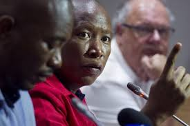Malema embarrasses EFF black lawyers after losing 5 cases to Afriforum: 'They ar… Malema embarrasses EFF black lawyers after losing 5 cases to Afriforum    They ar