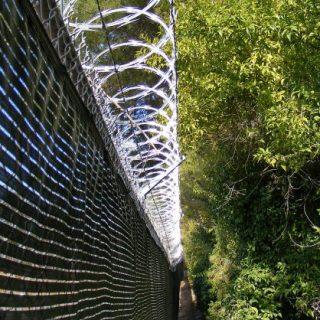 Criminal cuts genitals while scaling Benoni wall, climbs into helper's bed | LNN | Roodepoort Record Criminal cuts genitals while scaling Benoni wall climbs into helper   s bed LNN Roodepoort Record 320x320