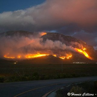 BETTY'S BAY FIRE UPDATE  & URGENT NOTICE FOR HANGKLIP, PRINGLE BAY,   ROOIELS 03… 49454374 1970994176282731 4364088416602685440 o 320x320
