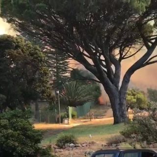 Fires in Cape Town today… 51997003 386300618770138 8773239050254417920 n 320x320