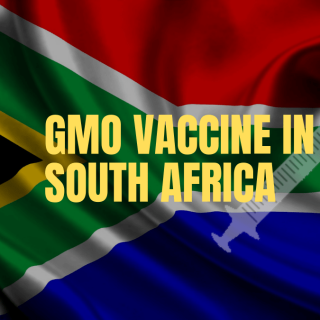 Have your say on GMO vaccine testing in SA gmovaccincedearsa 320x320