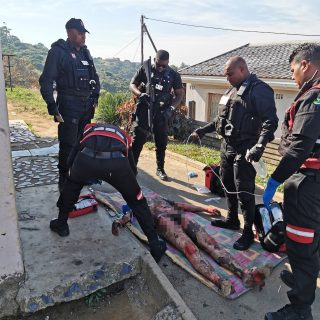 Habitual Thief Torched By Community: Parkgate – KZN  *Pictures are of a graphic … 64919626 2546720002013245 2761085671161462784 o 320x320