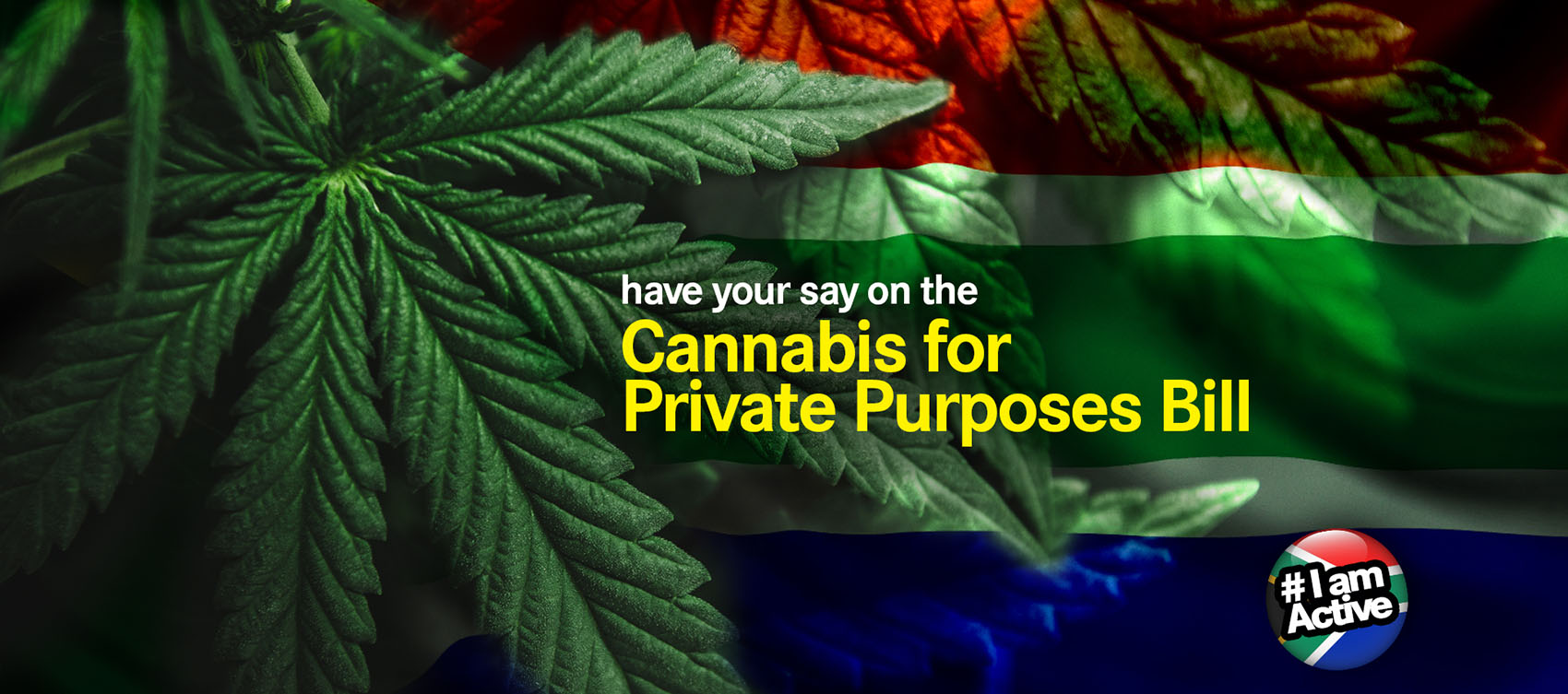 have your say on Cannabis for Private Purposes Bill DearSA Cannabis for private purposes