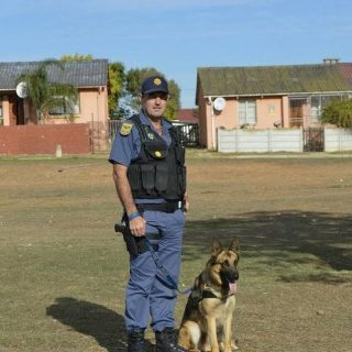 Alleged cable thieves apprehended by popular K9-Max max news 1598524916106732 320x320