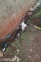 Tongaat Man Dies Of Electrocution: KZN  A man in his twenties was killed after h… 123917850 3798544753497424 6940174936723977908 o